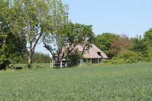 Holiday home 1915 in Ballen, Fyn for 6 people - image 12079832