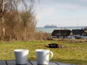 Holiday home 53798 in Langeland, Spodsbjerg for 6 people - image 19404053