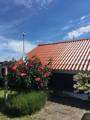 Holiday home 507 in Kerteminde for 4 people - image 29569738