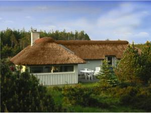 Holiday home 785 in Svinkløv for 8 people - image 12077635
