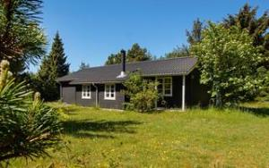 Holiday home DCT-94155 in Stauning for 4 people - image 141581001