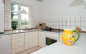 Holiday home DCT-94155 in Stauning for 4 people - image 141581021