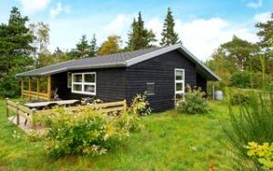 Holiday home DCT-04559 in Stauning for 6 people - image 141294071